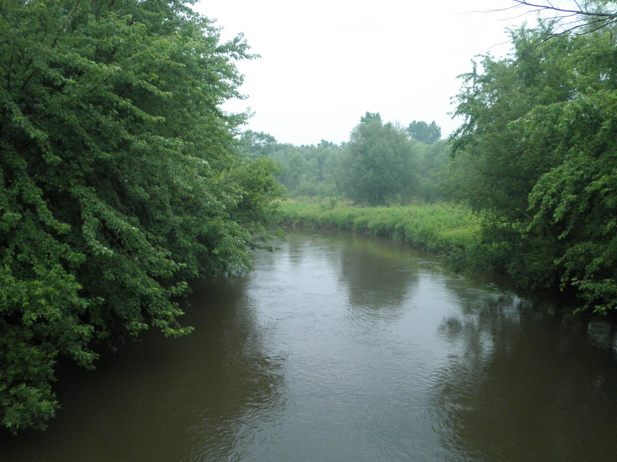 River Mature 61